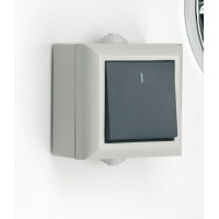 SMJ EP1G2P BlackWhite light switch