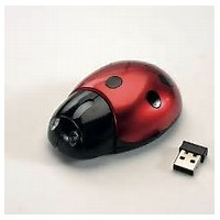 wireless ladybird mouse ideal for children